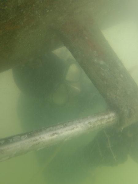 Boat bottom cleaning. Palmetto Bradenton Florida